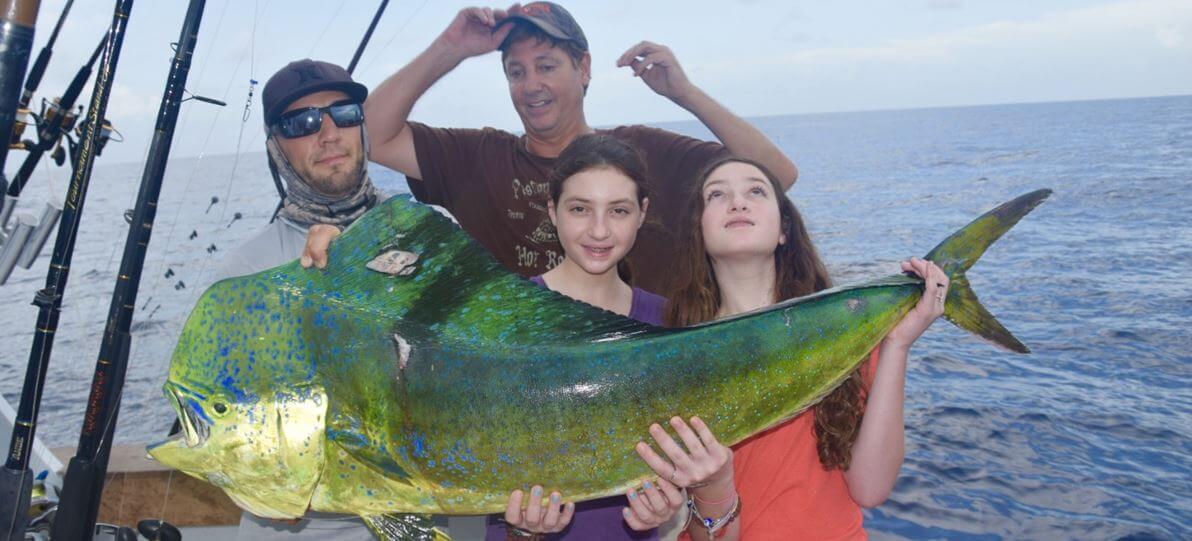 Bull Dolphin Caught Kite Fishing
