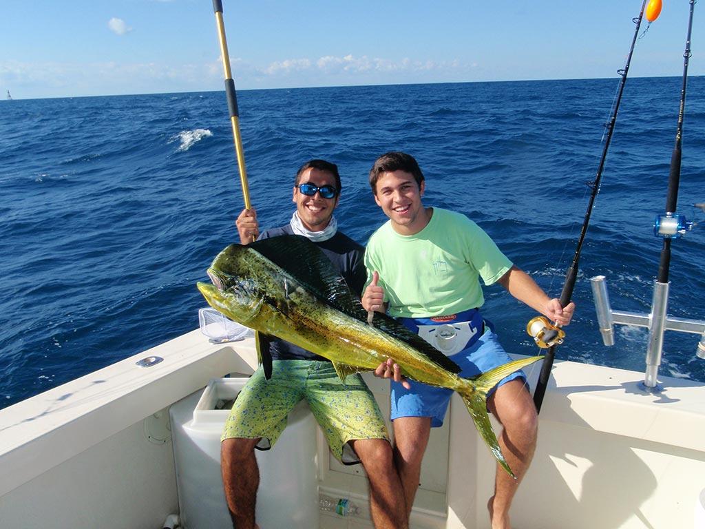 Dolphin Fishing Miami