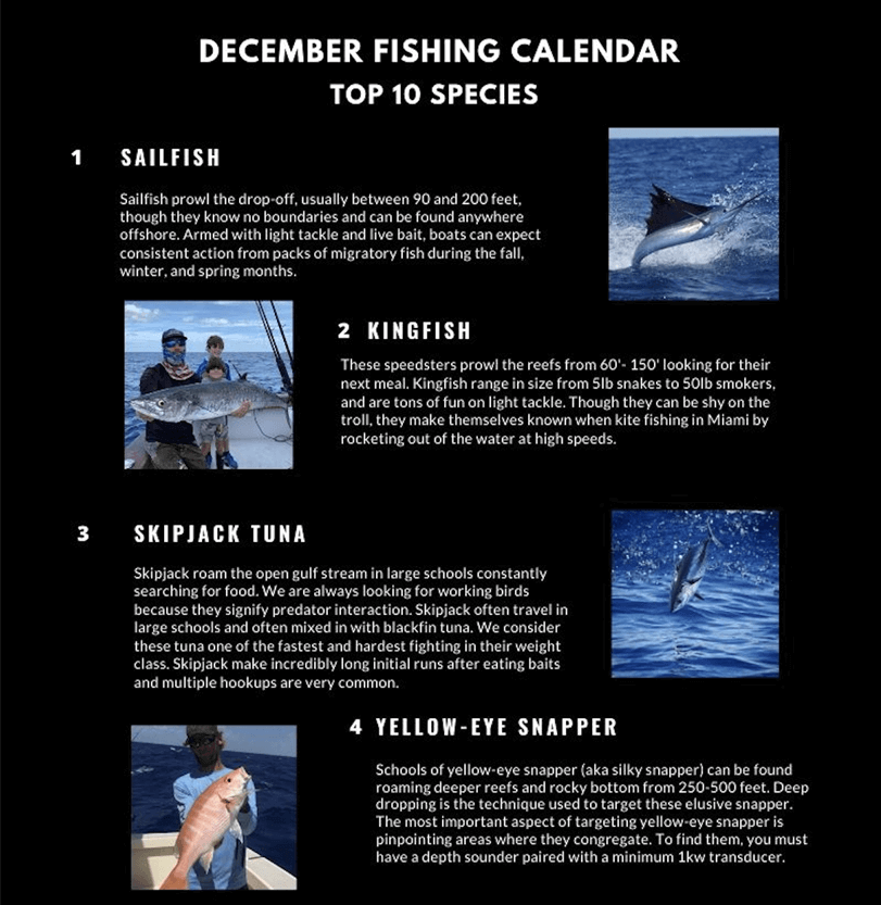 December Fishing Calendar Miami