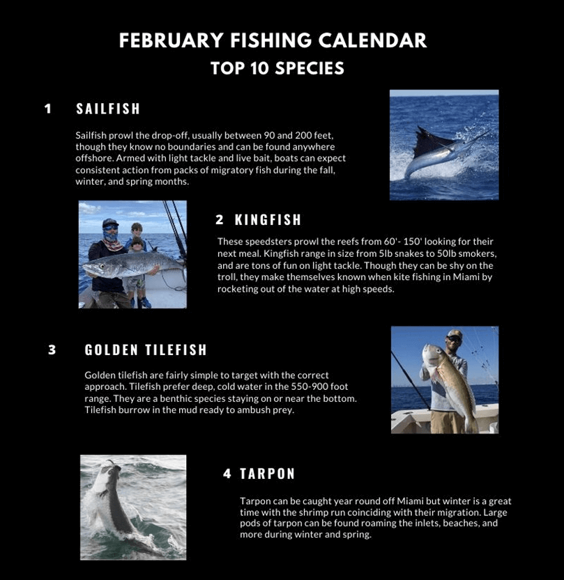 February Fishing Calendar Miami