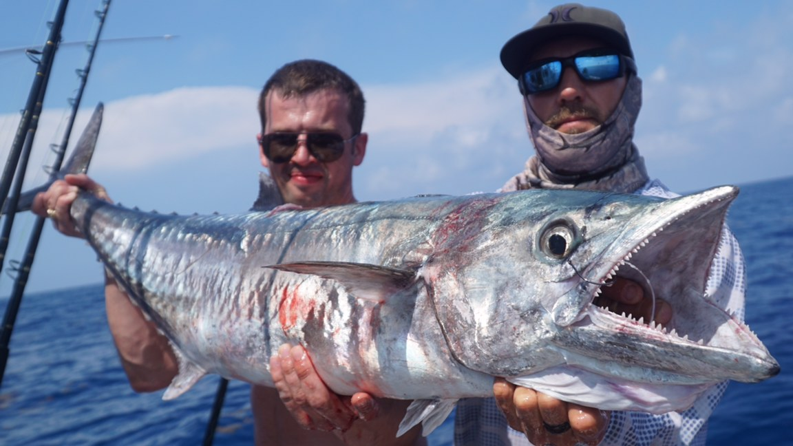 Planer Fishing for Kingfish - Double Threat Charters