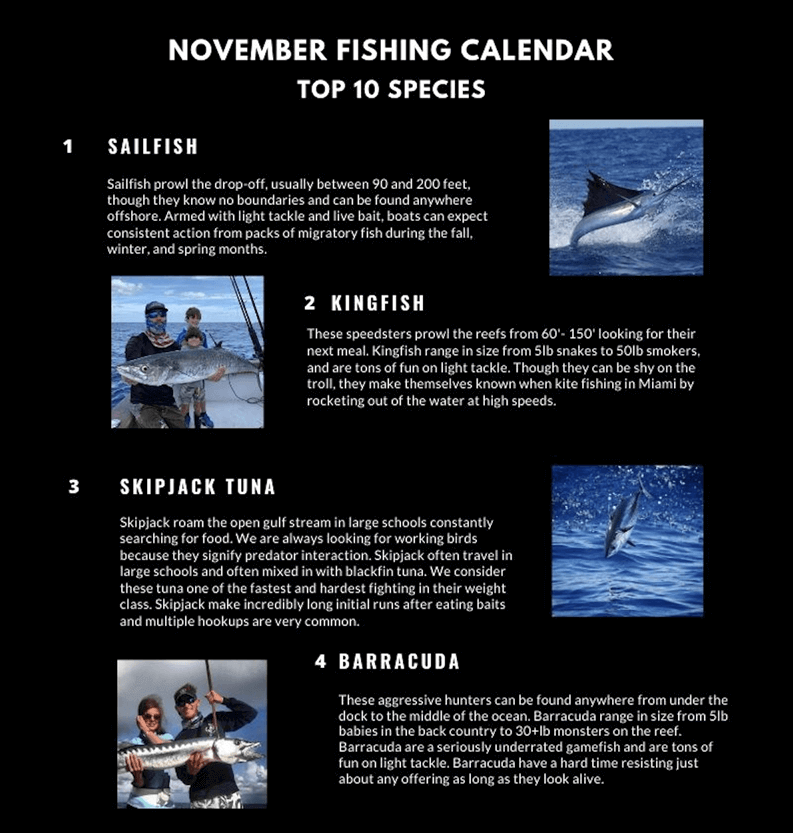 November Fishing Calendar Miami