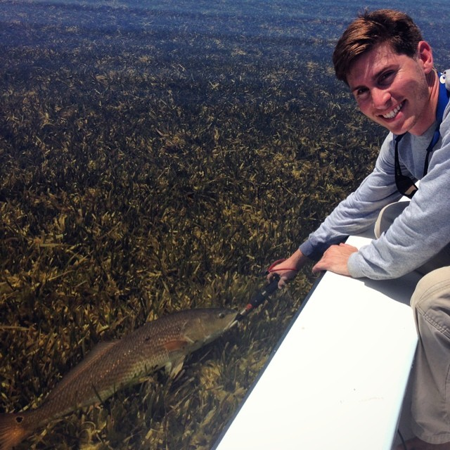 redfish on a grassflat