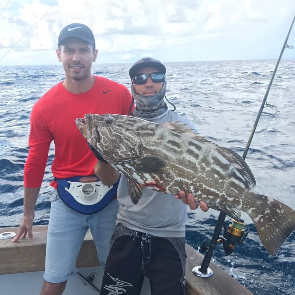 spring time black grouper